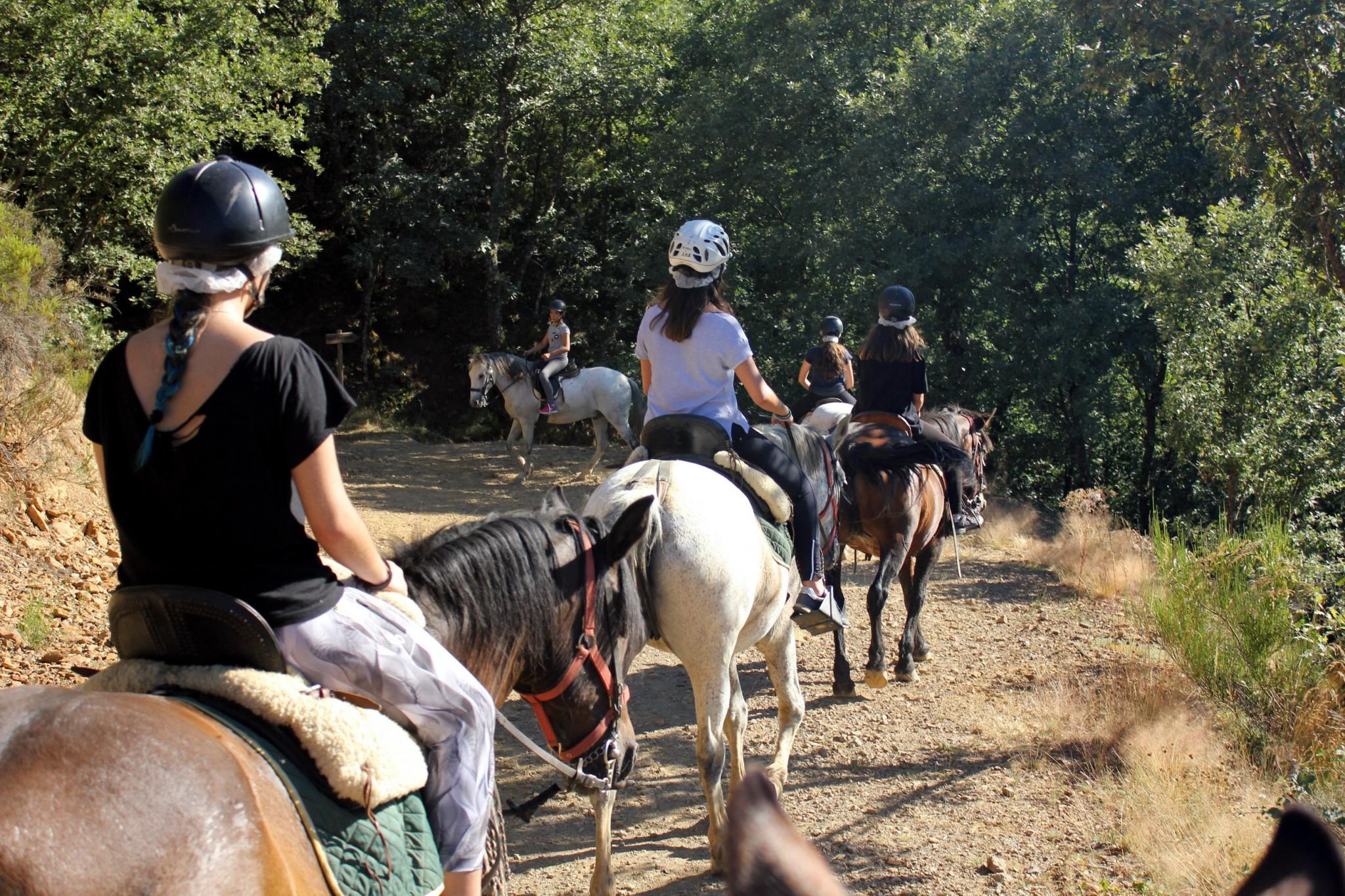 Campamentos de verano con caballo hipica en España León niños y jóvenes